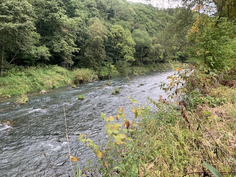 美瑛を流れる川