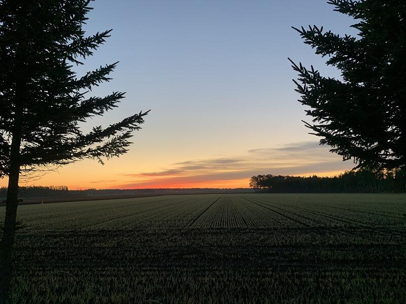 十勝平野の夜明け